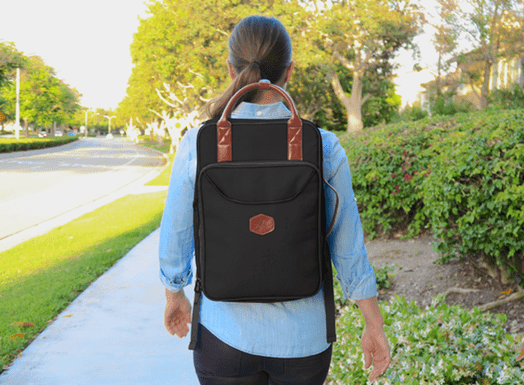 The Moose Anti-Theft Workstation Backpack id=