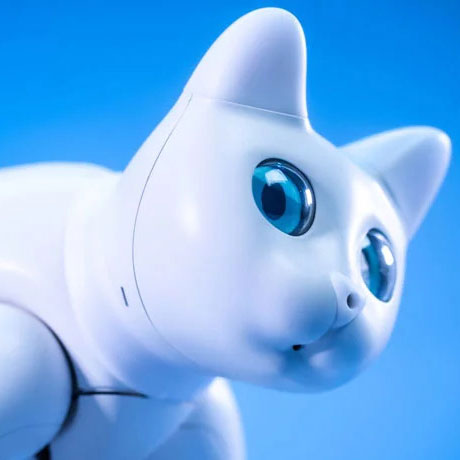 MarsCat – Bionic Cat Robot