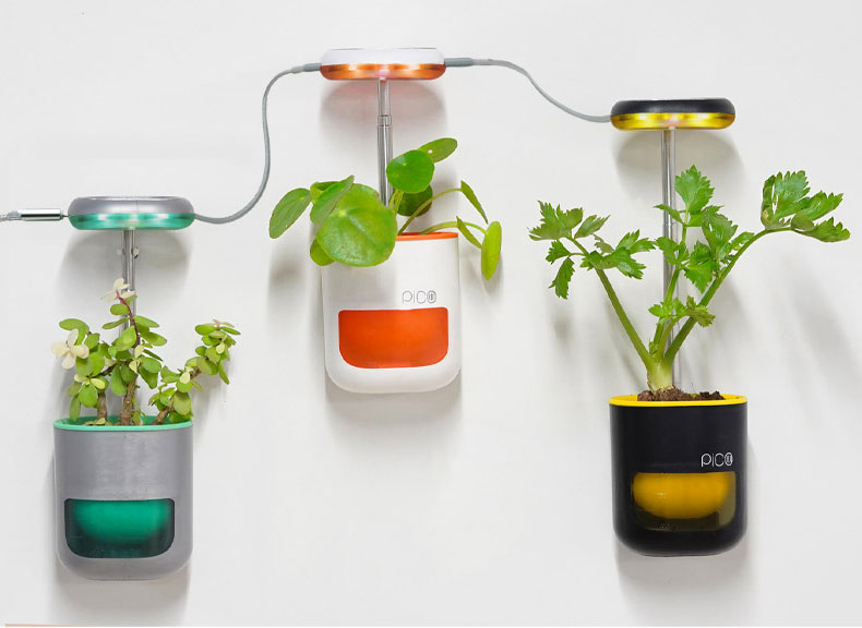 Pico tiny garden in your house id=