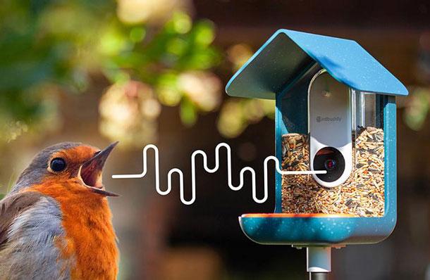 Bird Buddy id=
